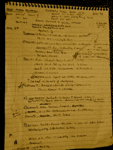 Notes, first blog post